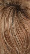 Nutmeg-F / Gradient Color - Dark Brown with Nutmeg Frost and Tips